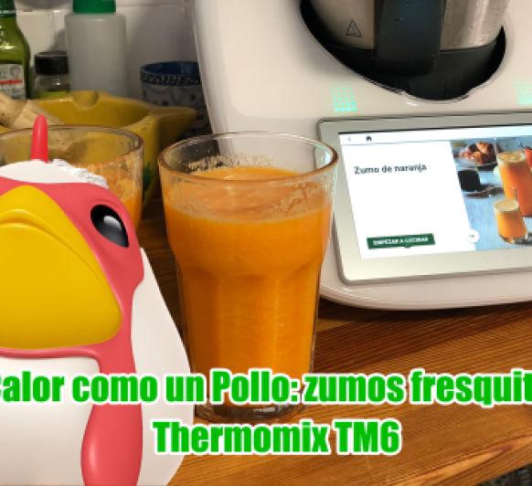 Zumo de naranja con hielo triturado en Thermomix® TM6: zumos para el caloooooo
